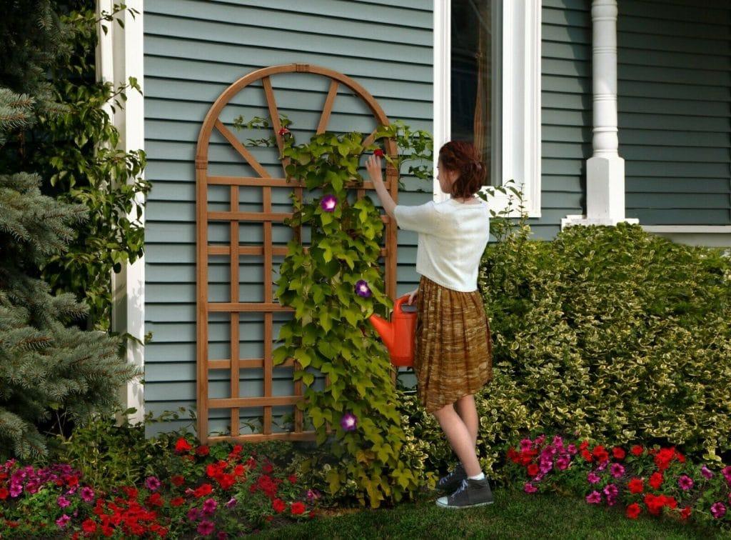 decorative-garden-trellis