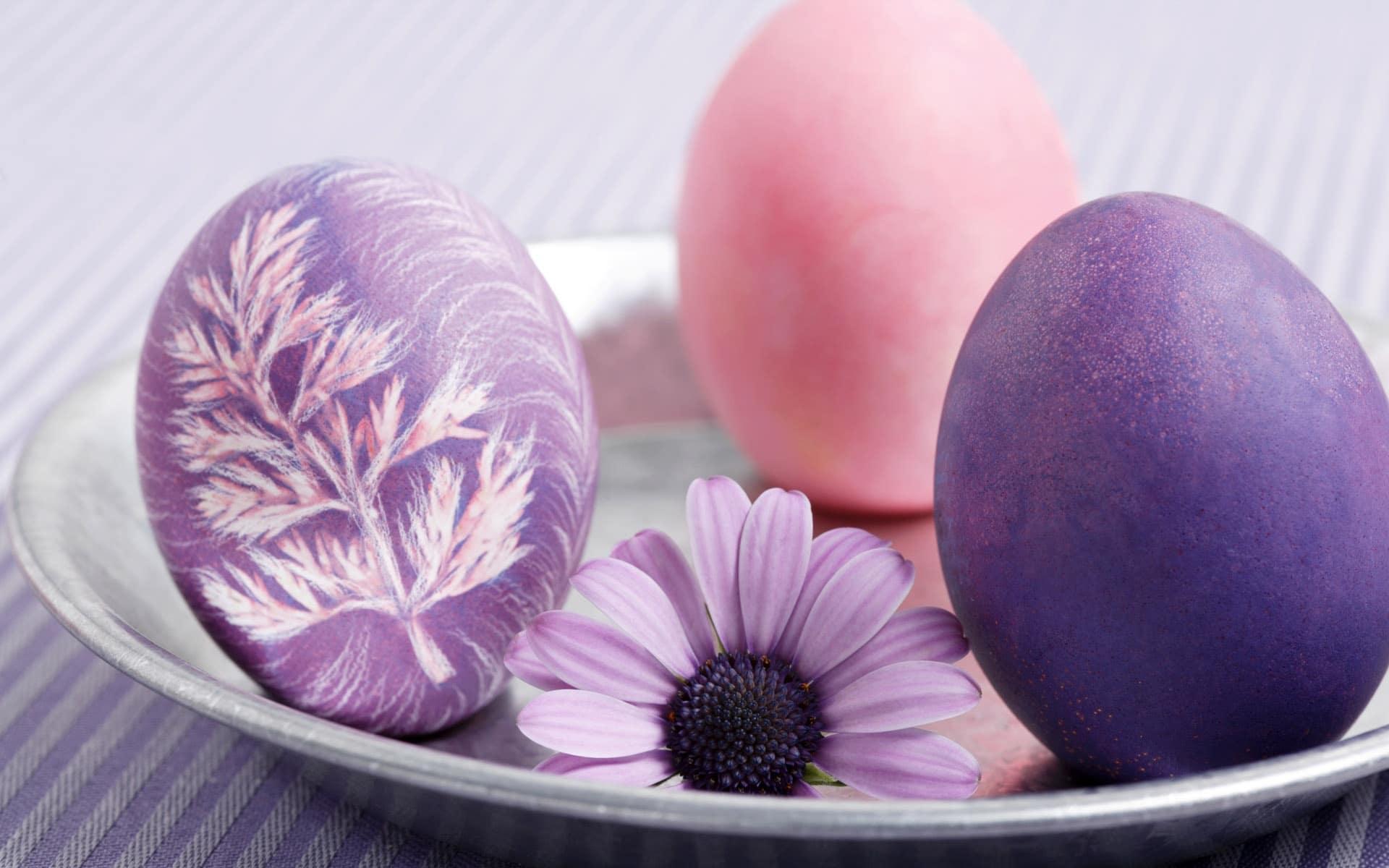violet_easter_colors