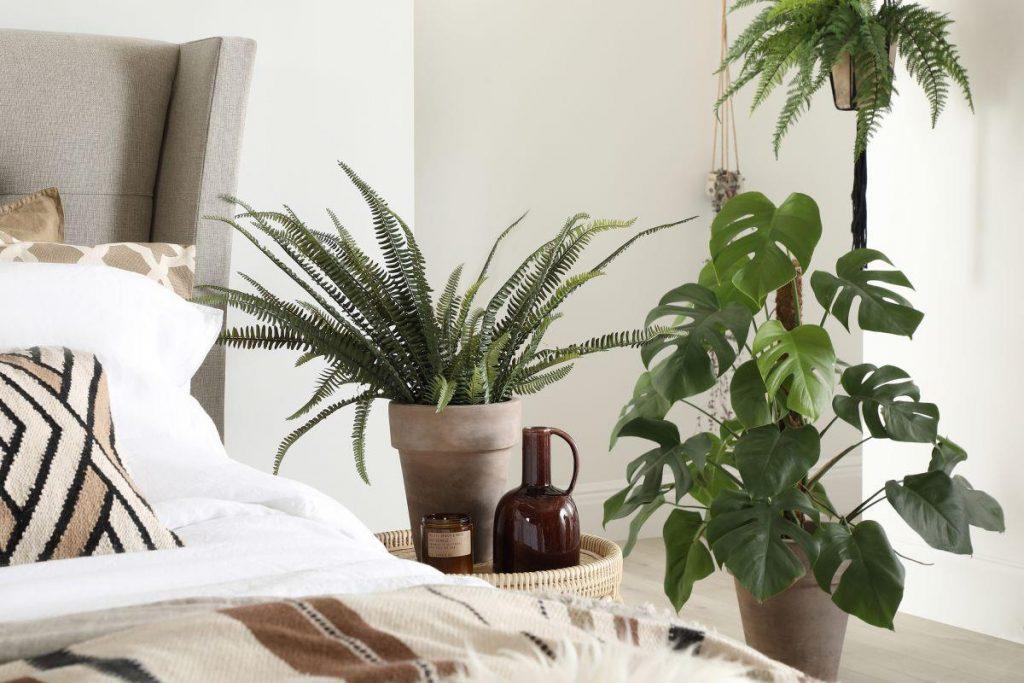 Bedroom-Floor-Plants