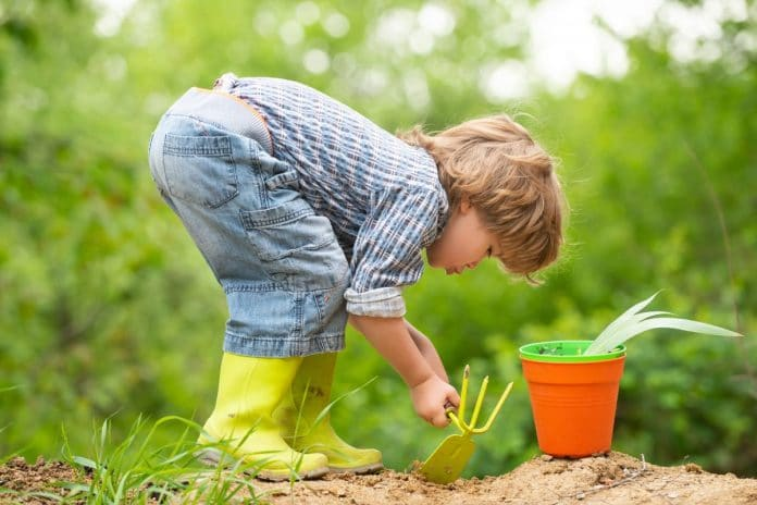 Flowers-to-Grow-with-Kids