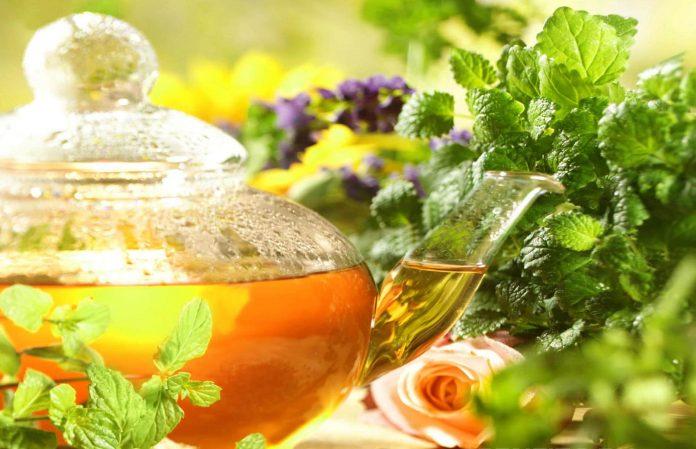 Growing-a-Herbal-Tea-Garden