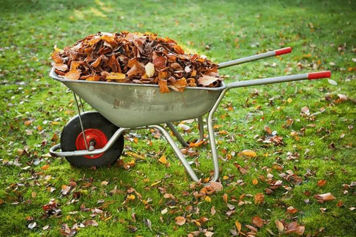 Must-Do-Garden-Tasks-for-Fall