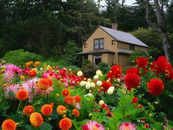 Reduce-Time-Spent-Flower-Garden