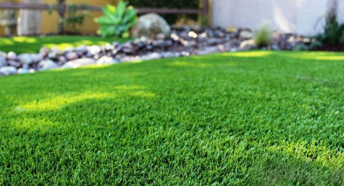 How-to-Remove-Bumps-and-Dips-in-Your-Lawn
