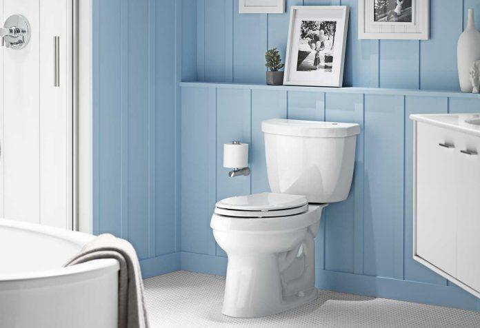 Best-Kohler-Toilet
