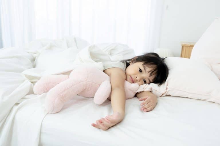 The 5 Best Toddler Pillows (2020)