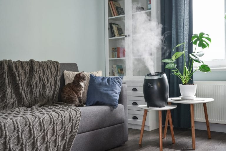 Best Humidifiers: What to Know Before You Buy